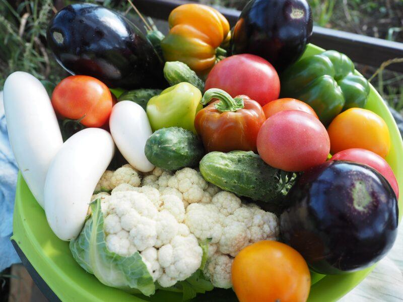 7 consejos para conservar las frutas y verduras en verano