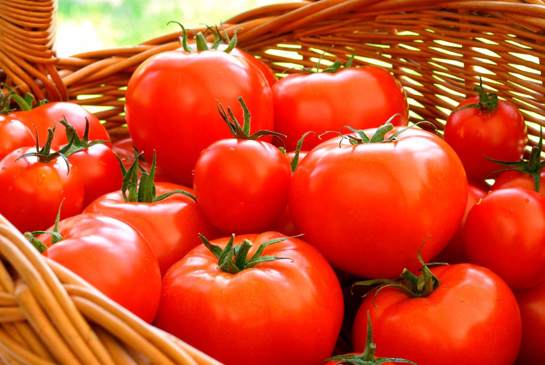 El tomate es una fruta o una verdura? | Frutas Olivar