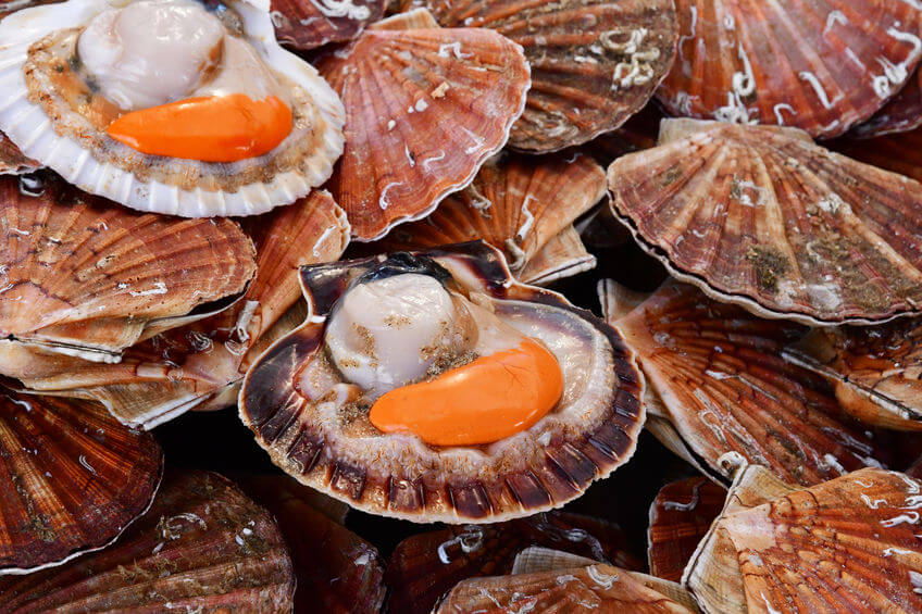 Mercado de abastos de Santiago de Compostela