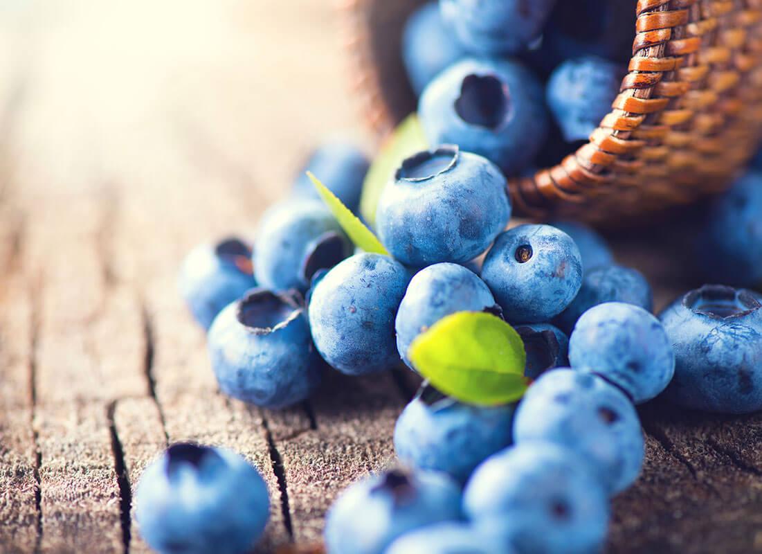 arandano azul