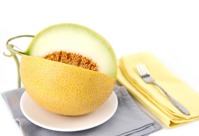 tipo de melon galia