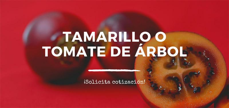 Comercialización Tamarillo