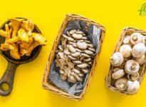 Las 7 variedades españolas de setas comestibles más usadas en la cocina